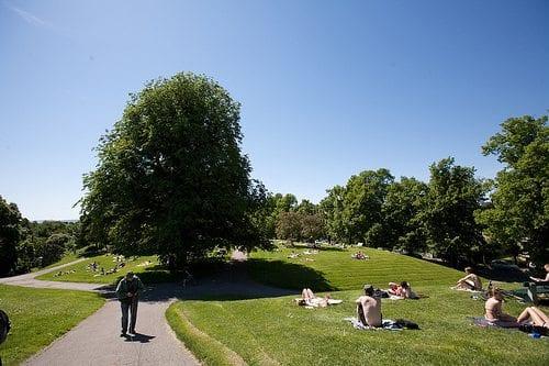 Det er få ting som er deiligere enn å slikke sol på fine sommerdager