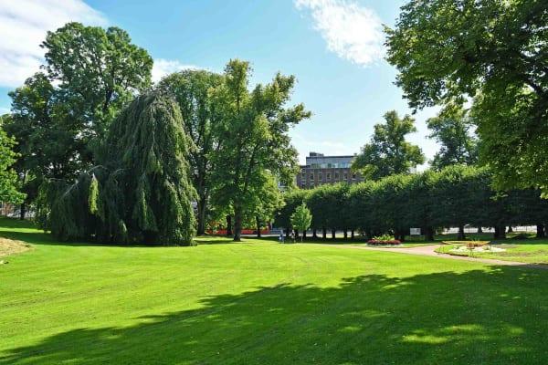 Dronningparkens grønne sletter