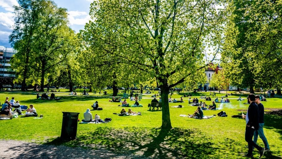 Mennesker i en park i oslo en solfylt dag