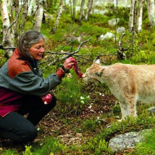 Ny sesong for Langedrag, Edvin Thorsen med kona Eva og datteren Tuva