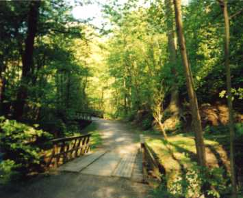 Frognerbakkdalen er en stille del av Frognerparken