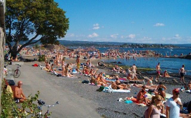 Strandliv på Huk