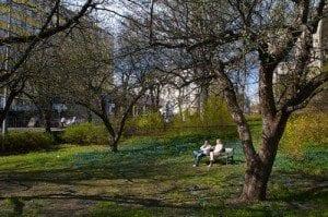 Hygeaparken i Oslo