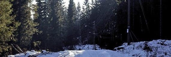 Vinter - midtvinterdag i Oslo