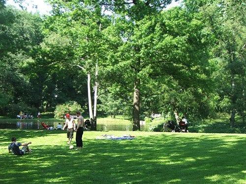 Parken kan brukes på mange måter, for eksempel kan du spille fotball eller bare slappe av. # Piknik i parken