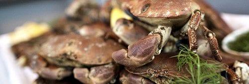 krabbefest på Havsmak
