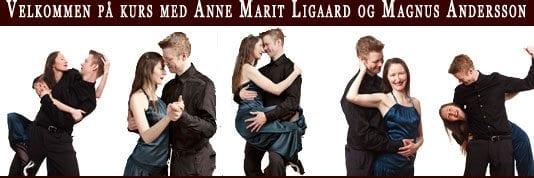 Tango Tango holder tangokurs for både erfarne dansere og nybegynnere