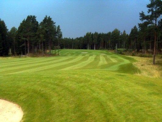 grnmo_golfbane