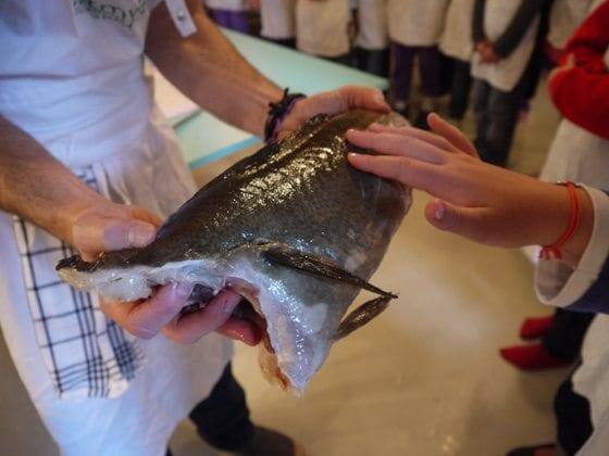 Barn-kjenner-på-fisk