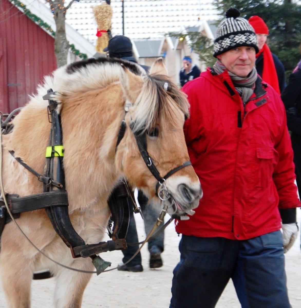 Hest-og-kjerre-alle-helger