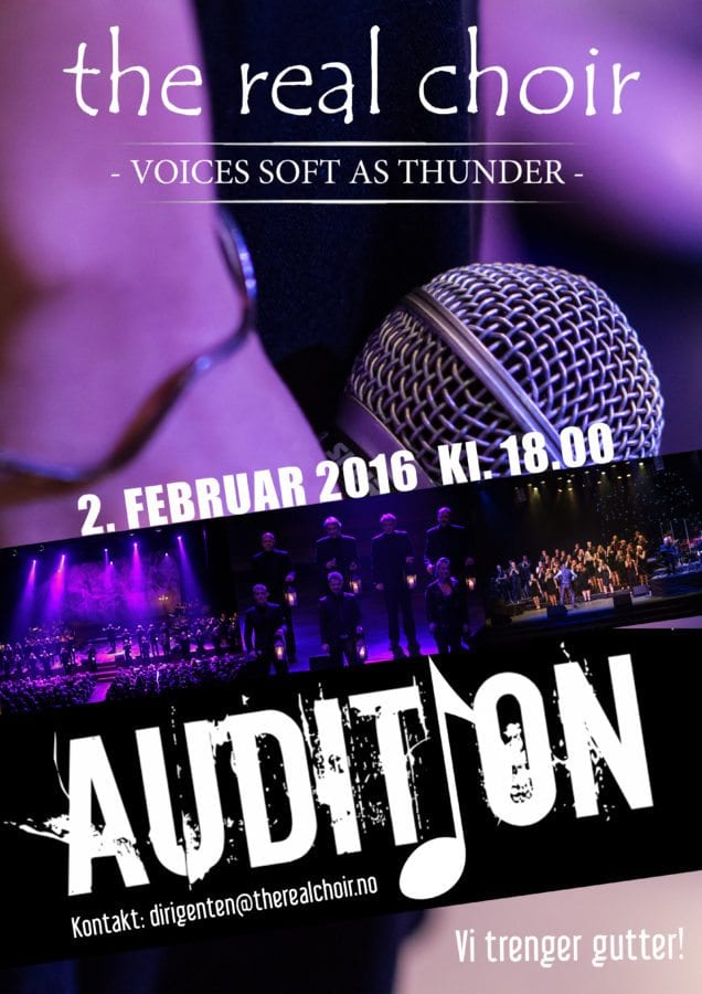 Auditionplakat 2016