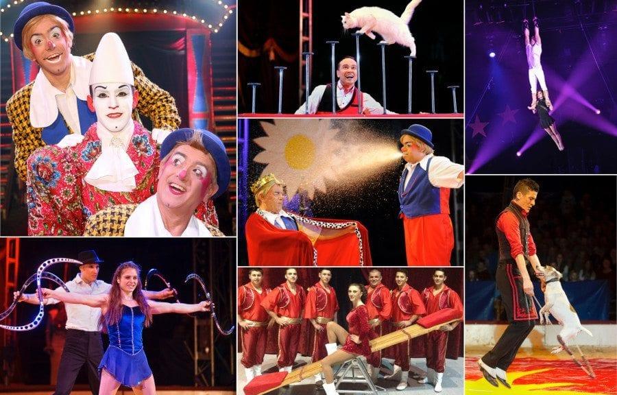 Cirkus Arnardo i Oslo hovedbilde