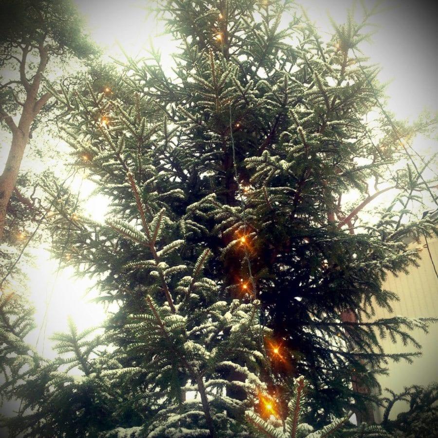 Juleverksted i Ekebergparken hovedbilde