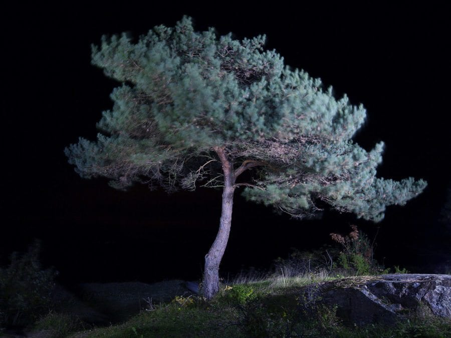 «LED» av Bård Ek hovedbilde