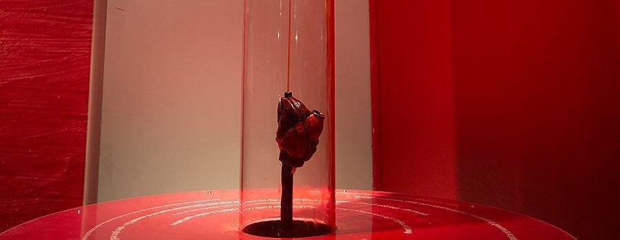 VINTERFERIEN på Teknisk museum: Blodet ditt, grisedisseksjon og vitenshow! hovedbilde