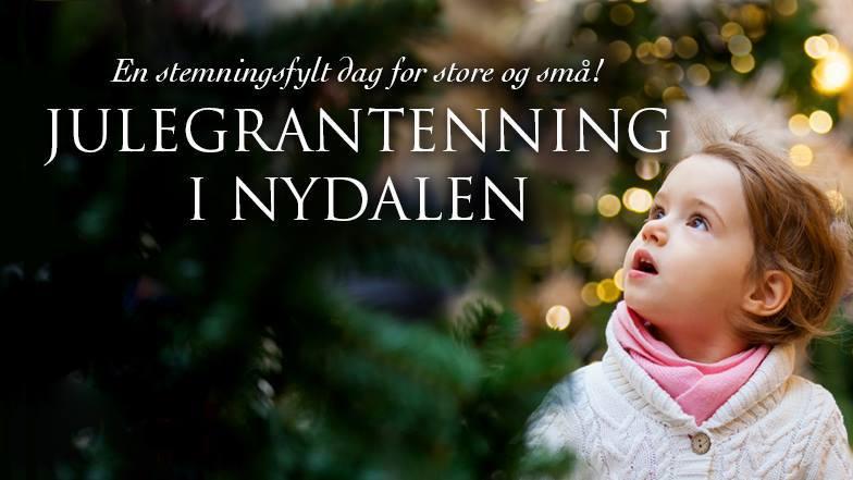 Julegrantenning i Nydalen hovedbilde