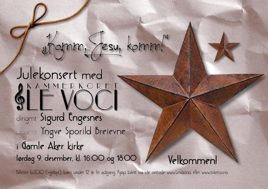 Julekonsert med kammerkoret Le Voci hovedbilde