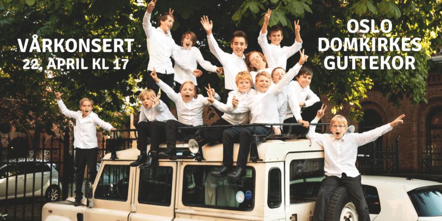 Vårkonsert med Oslo Domkirkes Guttekor: No livnar det i lundar hovedbilde