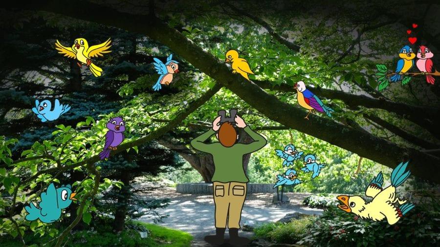 Fuglemorgen hovedbilde