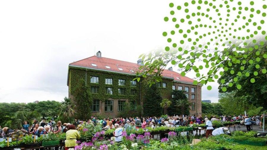 Vårtreffet – plantesalg i Botanisk Hage hovedbilde
