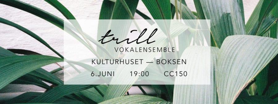 Sommerkonsert med Trill Vokalensemble hovedbilde