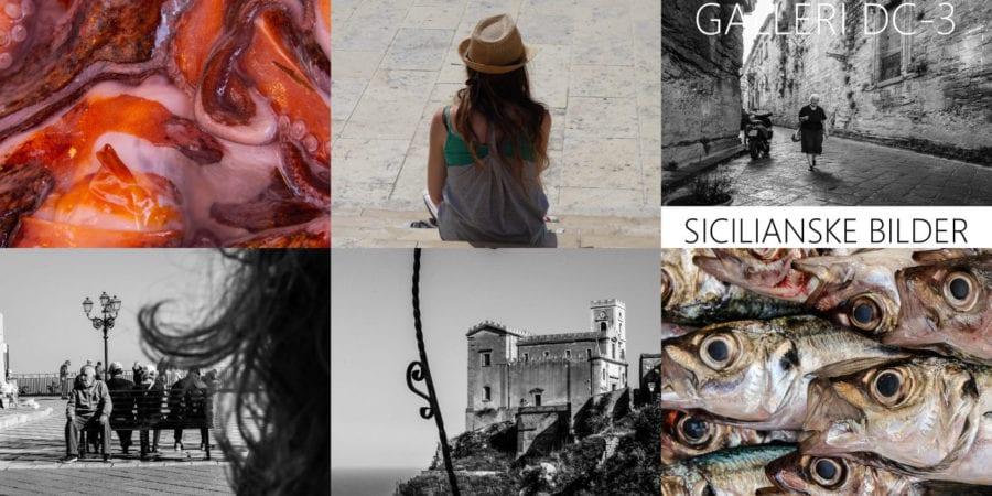 Scicilanske bilder – vernissage hovedbilde