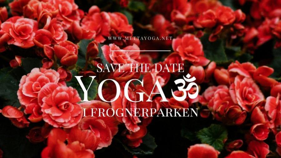 Yoga i Frognerparken hovedbilde