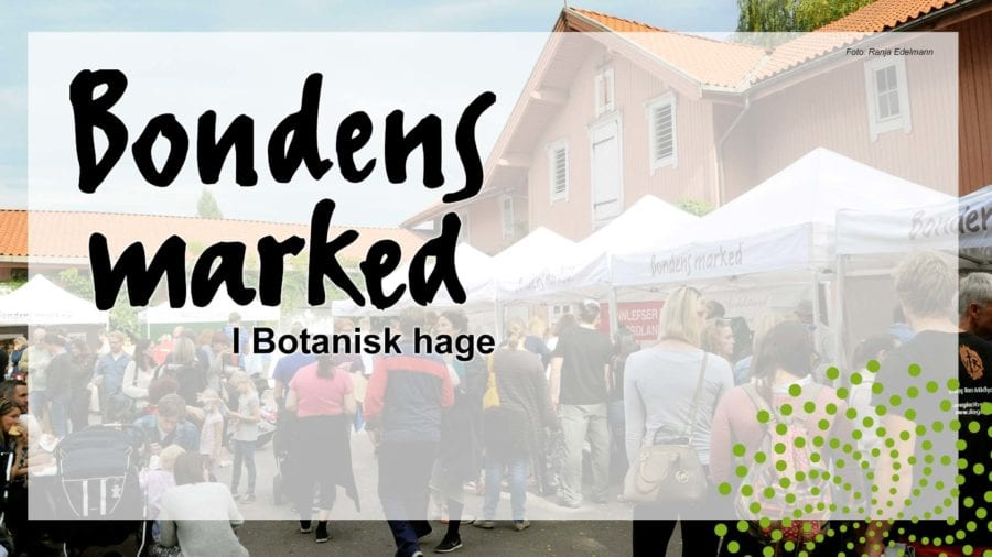 Bondens marked i Botanisk hage hovedbilde