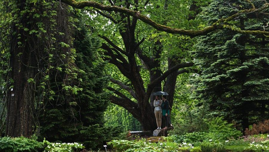 Omvisning i Botanisk hage 2018 hovedbilde