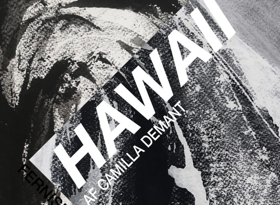 Utstillingsåpning // Hawaii av Camilla Demant (DK) hovedbilde