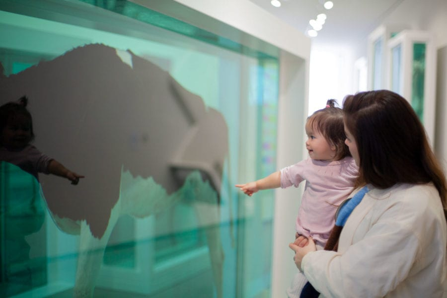 Babyomvisning på Astrup Fearnley Museet hovedbilde