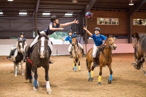Ridekurs: Introduksjonskurs i horseball hovedbilde