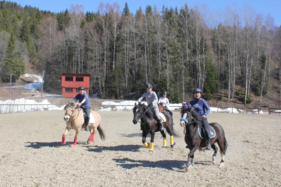 Dagskurs i Horseball hovedbilde