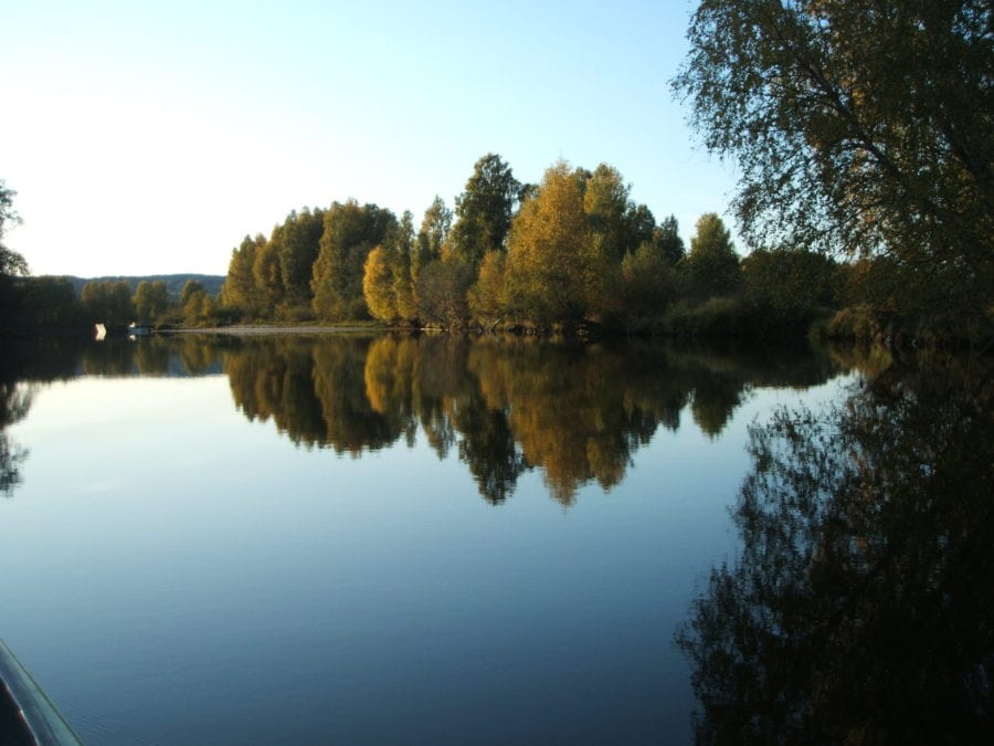 Eventbilde: Sensommertur i Nordre Øyeren naturreservat med SNO