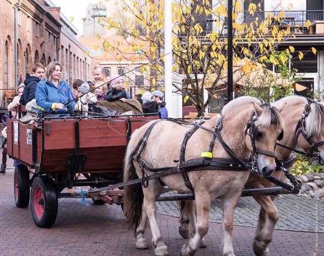 Familiearrangement – Møt hesten Halvard hovedbilde
