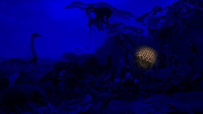 Eventbilde: Natt på Museet