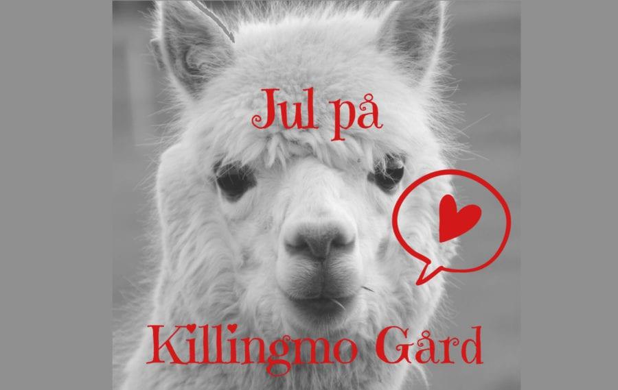 Eventbilde: Jul på Killingmo Gård