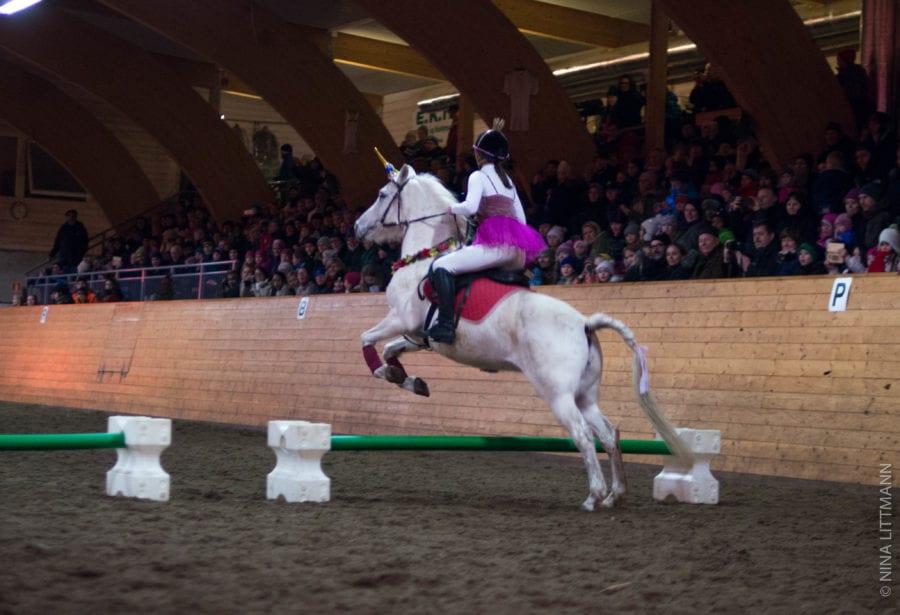 Juleshow med hester for hele familien hovedbilde