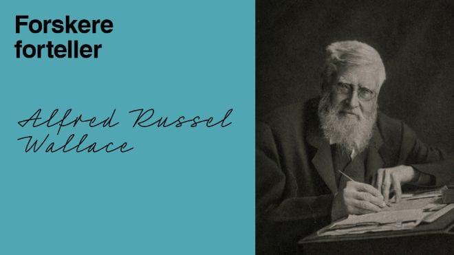 Årets Darwindag hovedbilde