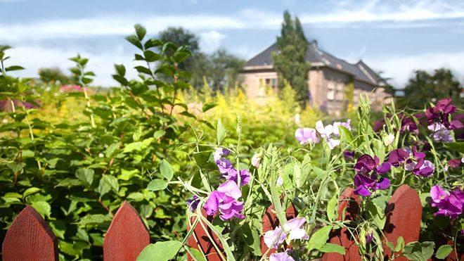 Eventbilde: Omvisning i Botanisk hage