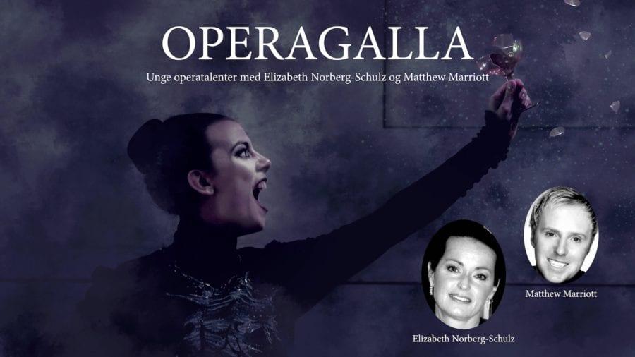 Eventbilde: Velkommen til Operagalla