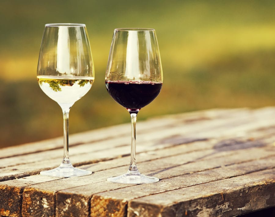 Eventbilde: Mathallens vinklubb: Sør-Afrika