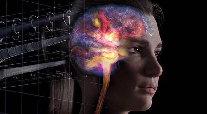Fotoutstilling: Den fantastiske hjernen hovedbilde