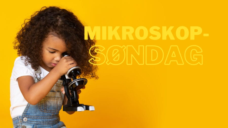 Eventbilde: Mikroskopsøndag på Engineerium