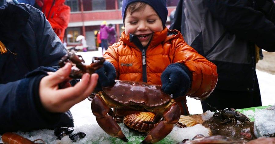 Spis havet – Åpen gård på Geitmyra hovedbilde