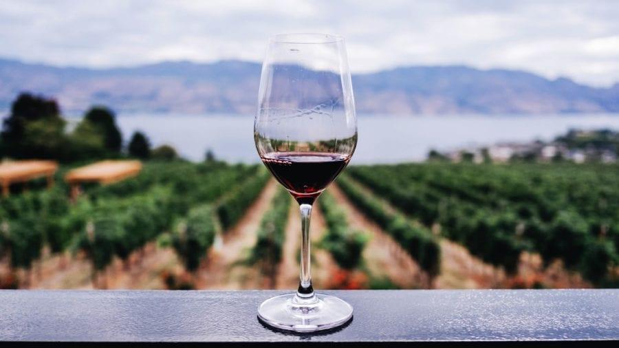 Eventbilde: Smak av Pinot Noir