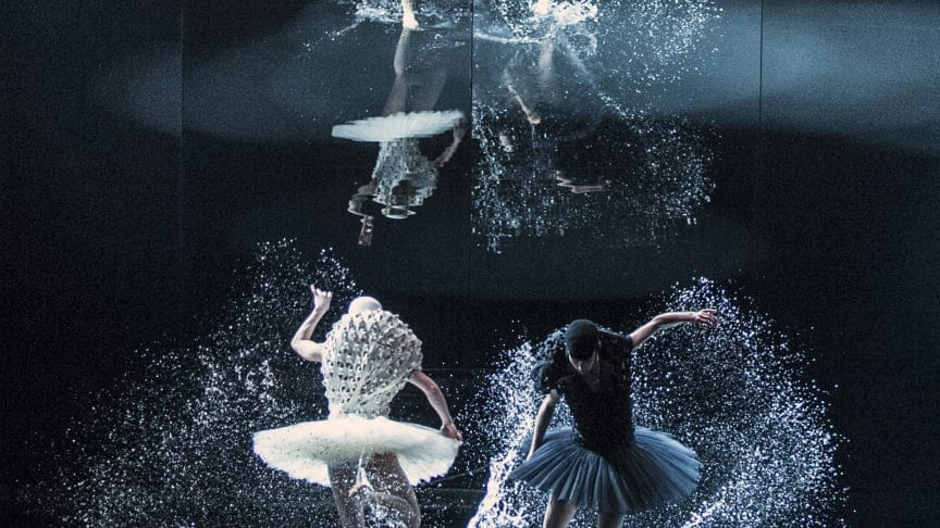 Eventbilde: Gratis digital visning – A swan lake