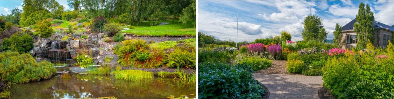 Botanisk hage, parker i Oslo, ting å gjøre i Oslo, romantiske ting å gjøre i Oslo