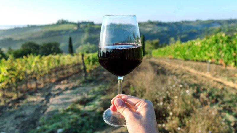 Eventbilde: Mathallens vinklubb: Røde italienske viner